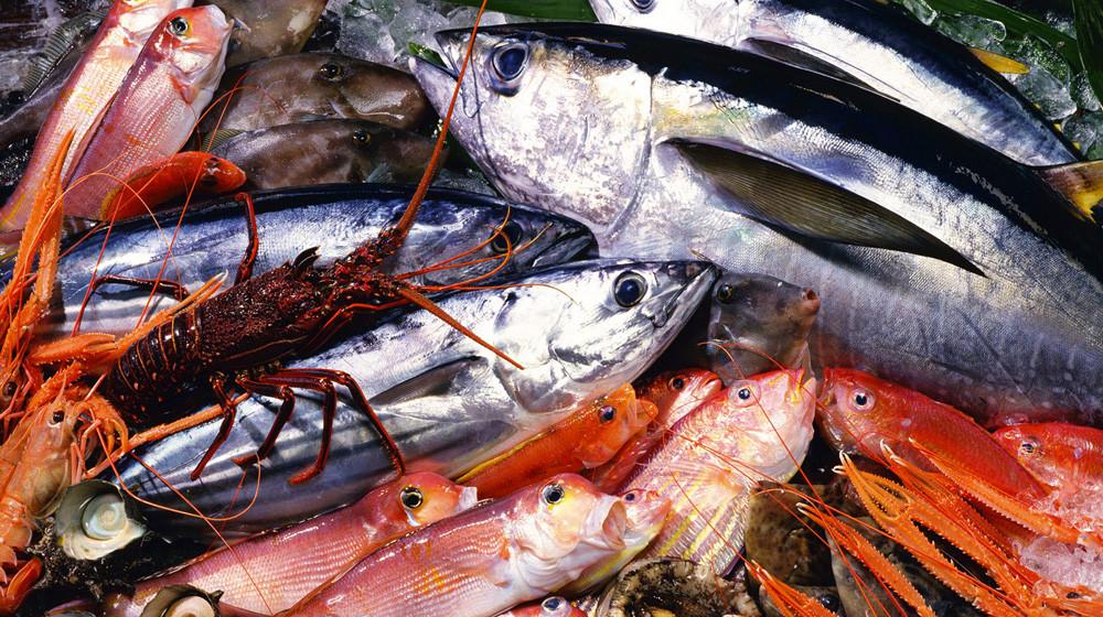 Come scegliere il pesce fresco per il Sushi